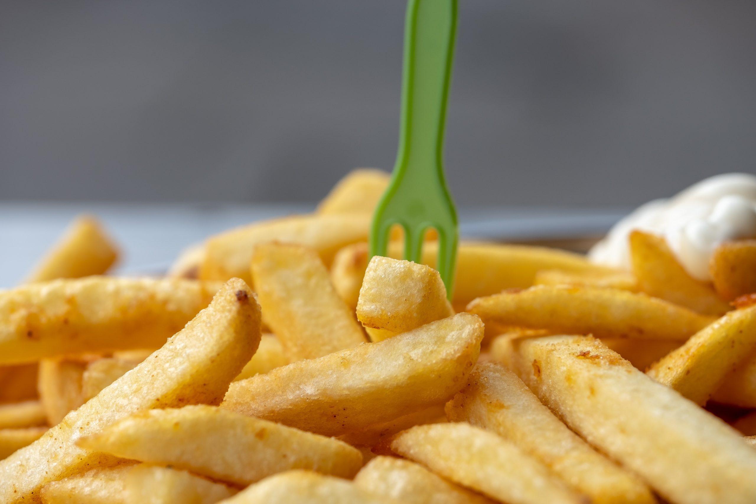 なぜマルゼン 涼厨フライヤーMGFシリーズが飲食店に選ばれるのか?